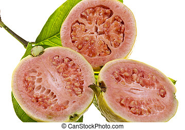 Pink Guava Fruit - Fresh pink flesh guava fruit isolated on...