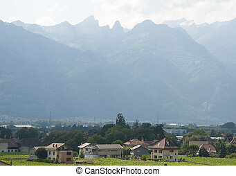 Houses amidst Vineyards - Houses amidst vineyards in Aigle,...