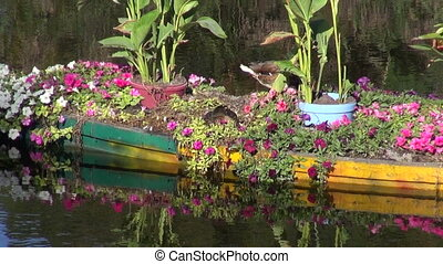 boat with flowers and ducks