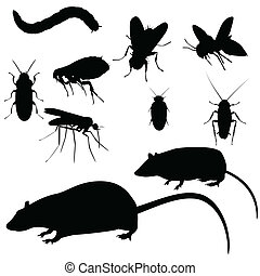 Pests set - Collection of vector pests, silhouettes on white...