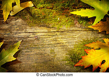 art autumn leaves on old wood background - art autumn fall...