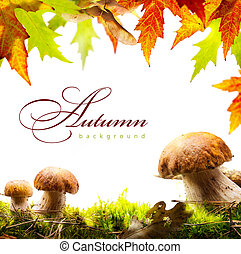 autumn background with yellow leaves and autumn mushroom -...