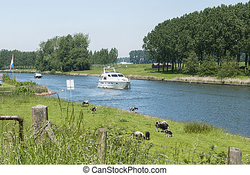 the river maas in holland - the old maas river in...