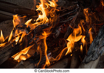 Fire and Frame with firewood 6