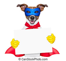 super hero dog with red cape and a blue mask holging a...