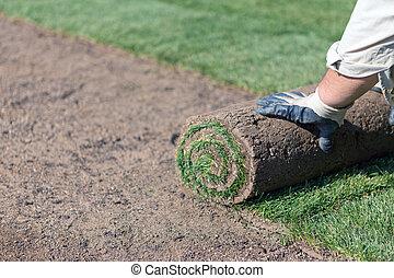 new lawn - installing new lawn