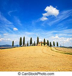 krajobraz,  orcia,  Farmland,  D,  val, Droga, kraj, cyprys,  Tuscany, Drzewa, Włochy, biały, Europa,  Siena