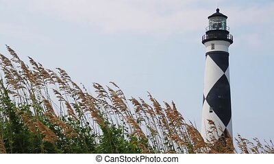 Cape Lookout Light Loop - Loop features sea oats blowing in...