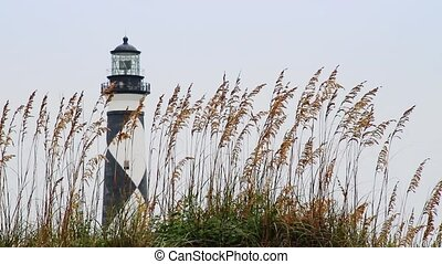 Cape Lookout Lighthouse Loop - Loop features the Cape...