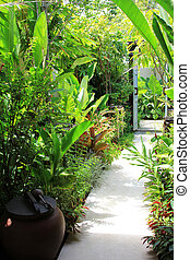 Tropical plants along walking path to the door