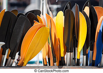 Coloured Paddles - Kayak Paddles in the sun