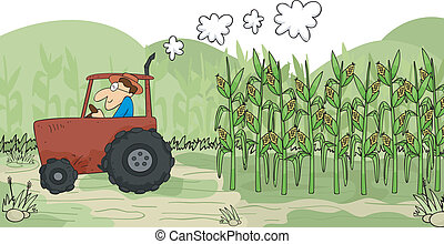 Harvesting Corn - Illustration of a Farmer Using a Tractor...