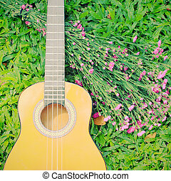 Ukulele guitar on green grass with flower
