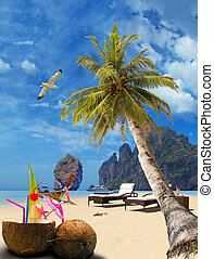 Tropical beach of Phi Phi island - Tropical beach with...