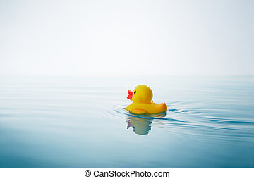 rubber duck - yellow rubber duck swimming on water with...