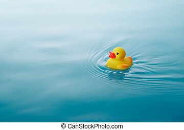 yellow rubber duck swimming on water causing waves and...