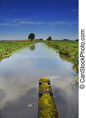 river in a rural landscape - water canal in between meadows...