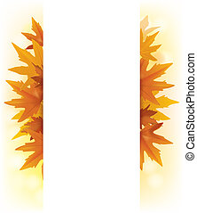 Banner of yellow maple leaves