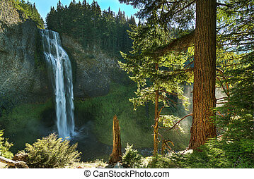 Salt Creek Falls located Located west of Willamette Pass in...