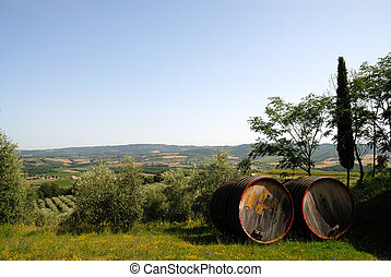 Barrels for Chianti wine in front of a landscape