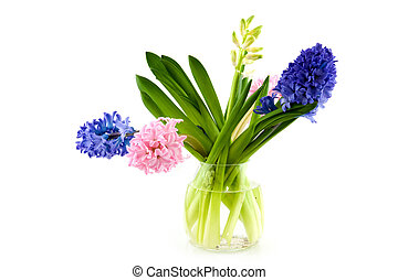 Hyacinths in a glass vase