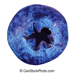 Single fresh blueberry isolated on white background