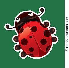 Ladybug isolated on color background