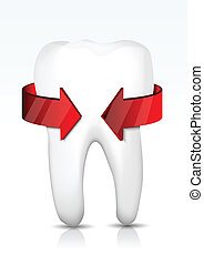 Vector tooth protection