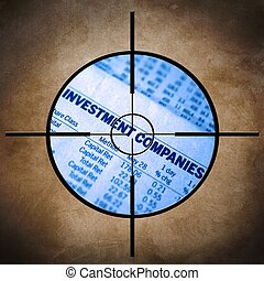 Investment target
