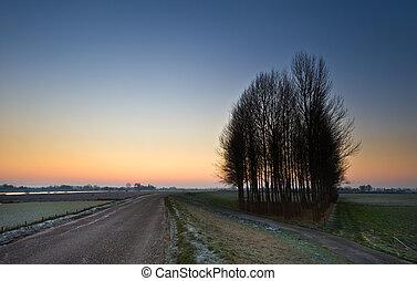 sunrise landscape - sunrise in a dutch landscape (IJssel,...