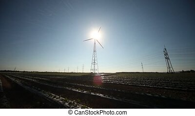 Strawberry field, Wind Engine, Shadow - video footage of...