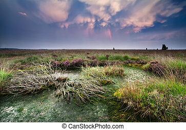 lenticular clouds after storm over bog at sunset