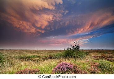 dramatic lenticular clouds at sunset - dramatic lenticular...
