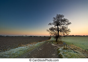 sunrise landscape - sunrise in a dutch landscape IJssel,...