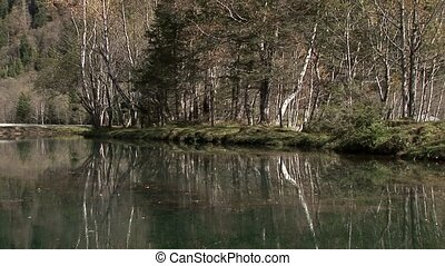 Lake in Forest - video footage of a mountain lake in a...
