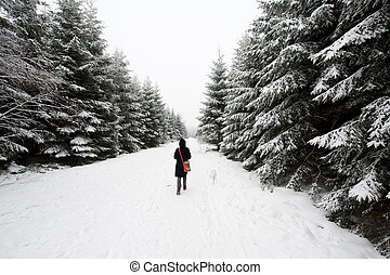walking in winter - woman walking through a forest in winter...