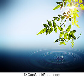 Foliage and drops falling in water with sun rays