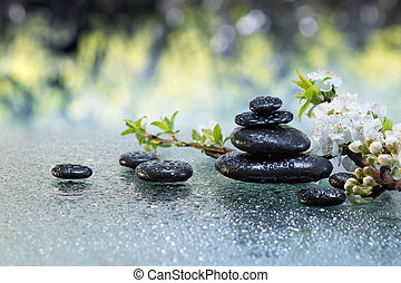 black stones and almond blossoms