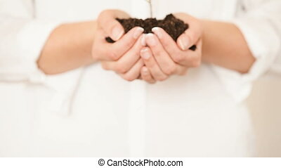 Handful of Soil with Young Plant Growing Concept and symbol...