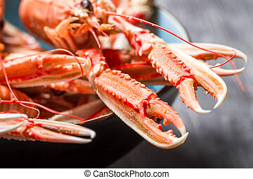 Closeup of cooked scampi with pincers