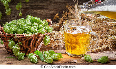 Homemade beer made of fresh hops