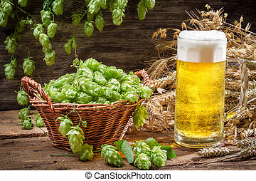 Basket full of hops and a cold beer