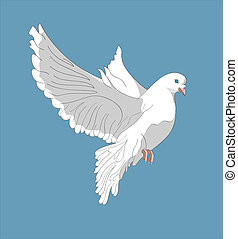 Fluing pigeon on blue background.