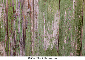 old wooden background with green paint
