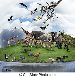 Um, colagem, de, selvagem, animais, e, Pássaros