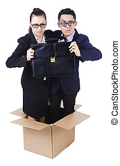 Pair of young in the box