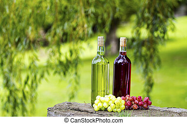 Wine Bottles - Two bottles of wine and some grapes