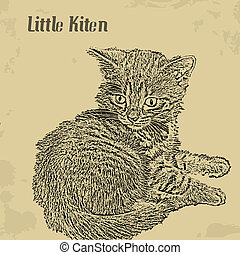 Little kiten vintage poster - Grunge vintage background with...