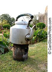 indio, té, ganado