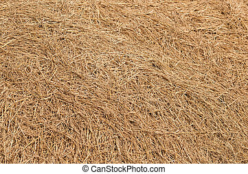 hay - View to straw closeup as background